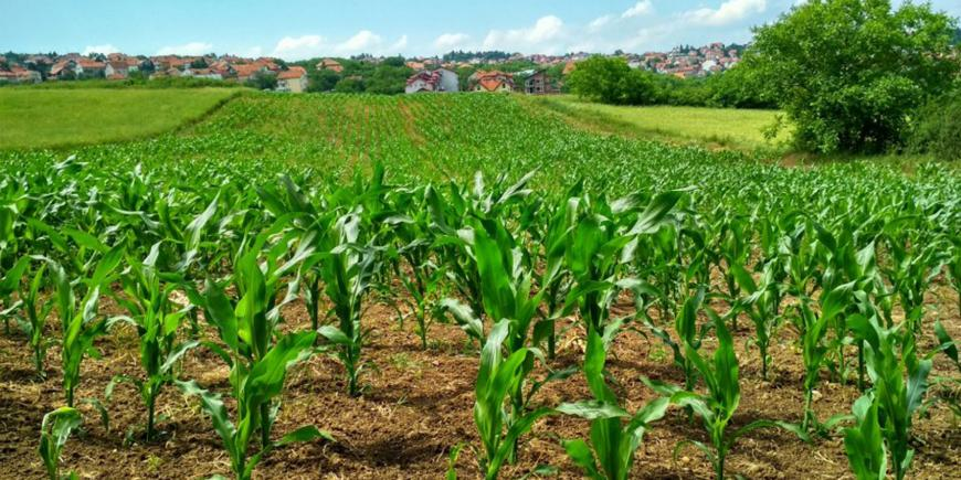 EIT Climate-KIC supported geoFootprint launched a new tool to accelerate sustainable agriculture