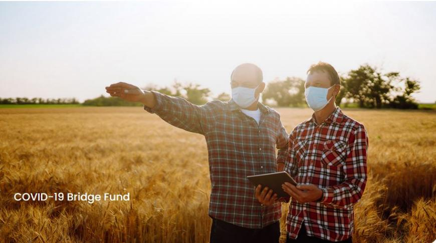 EIT Food: COVID-19 Bridge Fund