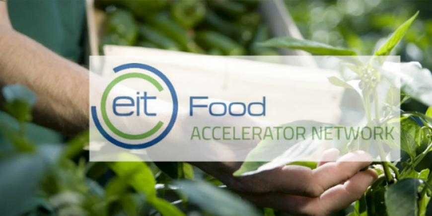EIT Food Accelerator Network: Fourteen finalists of the 2020 programme announced