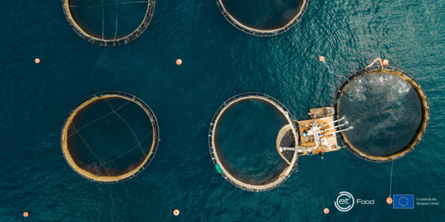 EIT Food projects to accelerate innovation in sustainable aquaculture